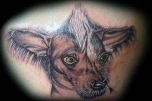 dog portrait tattoo-inksomnia
